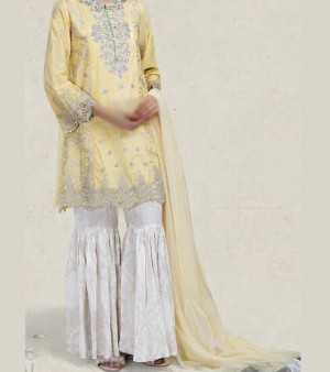 Embroidered Lawn Dress in Pakistan