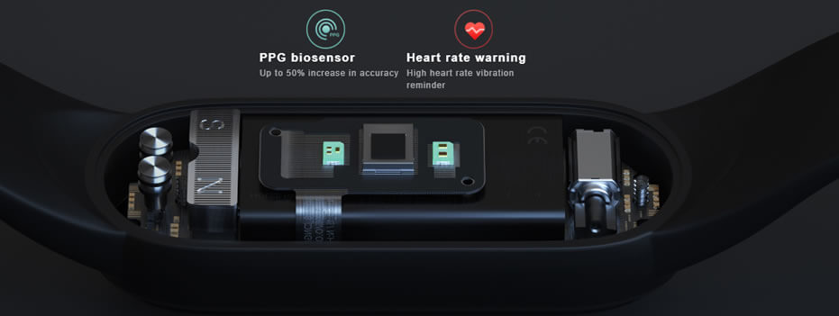 24 Hours Heart-Rate